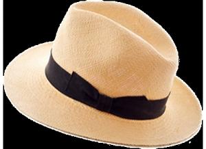 Panama Hat Image